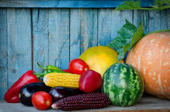 Autumn still life of vegetables. Corn, eggplant, squash, peppers, watermelon in the old background Stock Photos