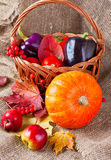 Autumn still life of vegetables, fruits and leaves. Basket of vegetables, fruits, pumpkins and autumn leaves Royalty Free Stock Photography