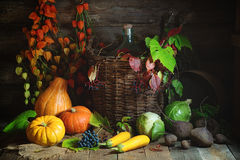 Autumn still life with vegetables, grapes and Chinese Lantern plants in rustic style. Autumn still life with vegetables, graps and Chinese Lantern Plants Autumn Stock Images