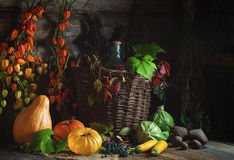 Autumn still life with vegetables, grapes and Chinese Lantern plants in rustic style. Autumn still life with vegetables, graps and Chinese Lantern Plants Autumn Stock Photo