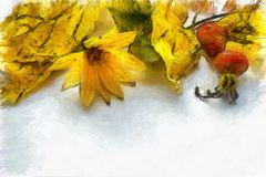 Autumn still life, watercolor. Yellow flower, dry leaves, hips of wild rose on white background vector illustration