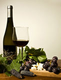 Autumn still life with wine and grapes. Bottle and cup of red wine with grapes Royalty Free Stock Photography