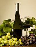 Autumn still life with wine and grapes. Bottle and cup of red wine with grapes Stock Photos