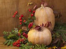Autumn Still Life With A Pumpkin. Royalty Free Stock Photos