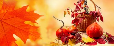 Free Autumn Still Life With Pumpkins, Berries And Bright Red Golden Yellow Maple Leaves. Autumn Harvest Decoration Royalty Free Stock Image - 193820226