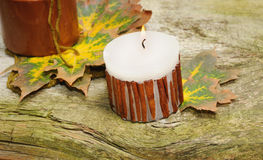 Autumn still-life on wooden background Royalty Free Stock Photo