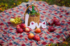 Autumn still life in the woods picnic basket Royalty Free Stock Photos