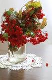 Autumn stilllife Stock Image