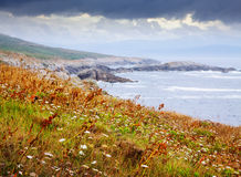 Autumn stone beach at ocean  coast Stock Photos