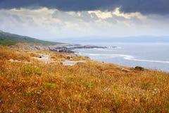 Autumn stone beach at ocean  coast Royalty Free Stock Images