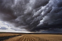 The autumn storm Stock Images