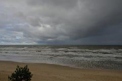 Autumn storm on the Baltic Sea coast Stock Photos