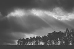 Sunbeams on a dark forest. An autumn storm brings in dark clouds just as the sun shines down over a dark forest causing sunbeams to break through Royalty Free Stock Images