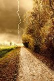 Autumn storm in the park royalty free stock image