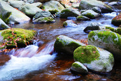 Autumn Stream. Stream ,stone,green moss  in the valley Stock Image