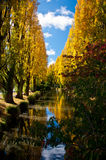 Autumn Stream 2 Royalty Free Stock Photography