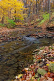 Autumn stream. A tranquil stream meanders through the woodland. a forest preserve near chicago, cook county illinois awakens in autumn colors carrying fallen royalty free stock image