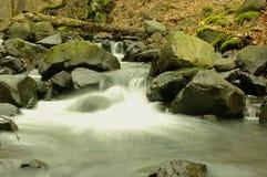 Autumn Stream lizenzfreie stockbilder