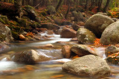 Autumn Stream Stock Photo