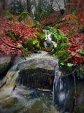 Autumn Stream imagen de archivo