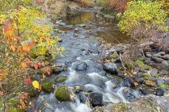 Autumn Stream at Bear Creek Okanagan Valley BC Stock Image