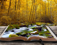 Autumn stream with book. Open book with autumn stream and rocks Royalty Free Stock Photo