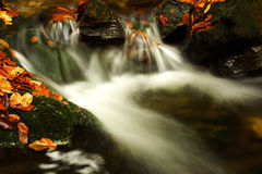 Autumn stream in Giant mountains. One of many streams in Giant mountains decorated by autumn foliage royalty free stock photo