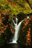 Autumn stream in Giant mountains. One of many streams in Giant mountains decorated by autumn foliage stock photography