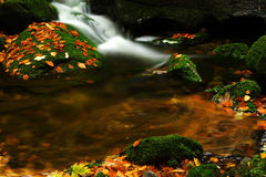 Autumn stream in Giant mountains Stock Photography