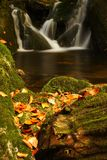 Autumn stream in Giant mountains Stock Image