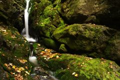 Autumn stream in Giant mountains. One of many streams in Giant mountains decorated by autumn foliage royalty free stock image