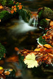 Autumn stream in Giant mountains. In Czech republic stock photo