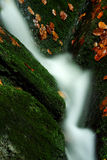 Autumn stream in Giant mountains. In Czech republic royalty free stock image