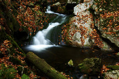 Autumn stream in Giant mountains. In Czech republic stock image