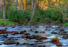 Autumn Stream HDR. Autumn stream shot in high dynamic range stock photo