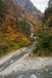 Autumn Stream och Liitle himmel Arkivbild