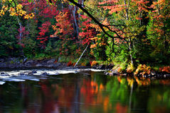 Autumn Stream Reflection Stock Photos