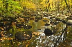 Autumn Stream Reflections Stock Photo