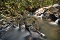 Autumn stream or small river with small rapid and fallen leafs l Royalty Free Stock Photography