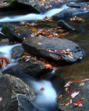 Autumn Stream, Western North Carolina. A romantic close up an autumn river scene in the heart of the Pisgah National Forest in Western North Carolina Royalty Free Stock Image