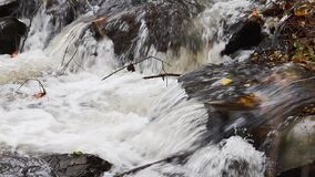 Autumn stream with wild water in close-up