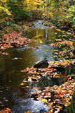 Autumn stream in the woods. Stream running through the woods with autumn leaves on rocks Royalty Free Stock Image