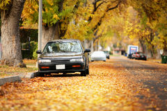 Autumn street Royalty Free Stock Photography