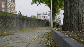Autumn street in Amsterdam, yellow leaves Royalty Free Stock Photos