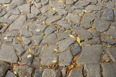 Autumn street - 18 Stock Photography