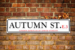 Autumn street and autumn leaves Royalty Free Stock Photos