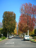 Autumn street, color changing trees Stock Image