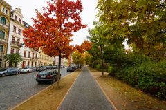 Autumn Street. Royalty Free Stock Images