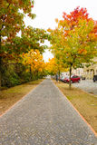 Autumn Street. Stock Image