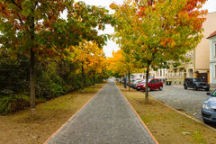 Autumn Street. Stock Photography
